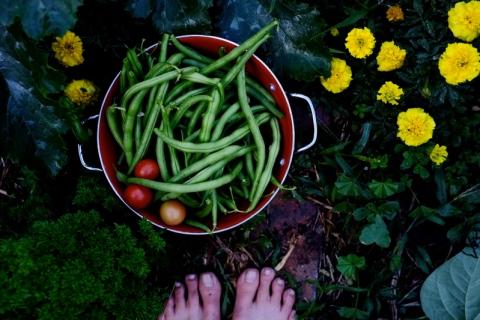beans w feet
