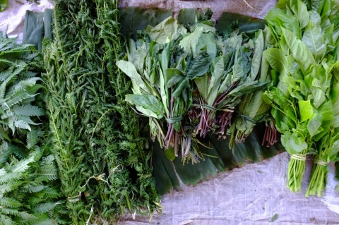 Traditional PNG vegetables at the market